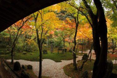 Jardin à Tokyo : Découvrez 5 jardins à Tokyo