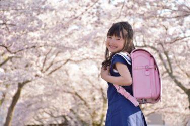 La cérémonie de l'entrée : Le système éducatif au Japon